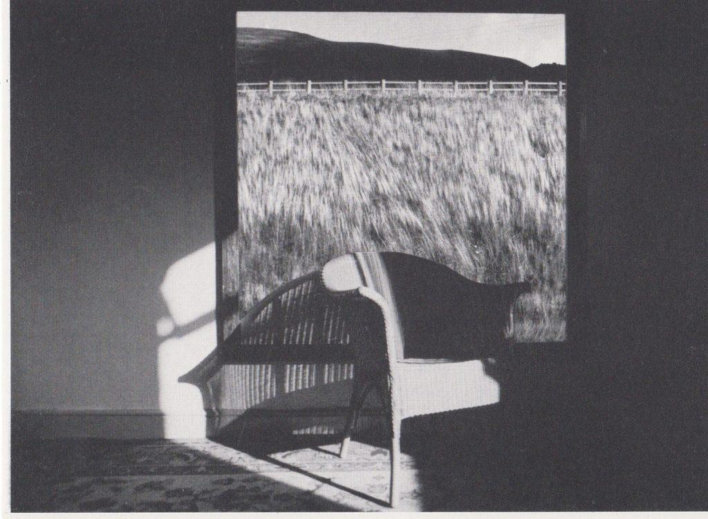013 - Grassland by Gary Waters original