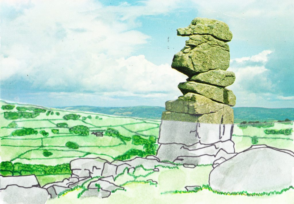 027b - Dartmoor Bowermans Nose