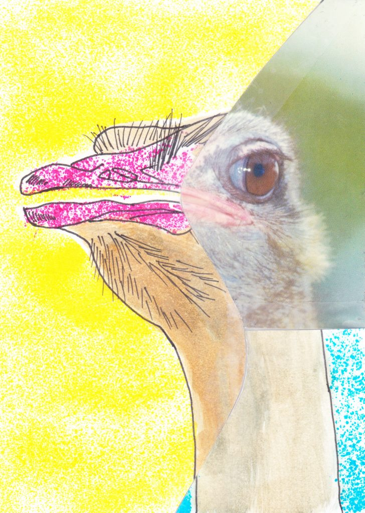 028b - Francis the Ostrich