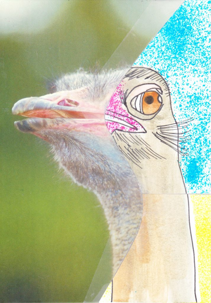 028c - Francis the Ostrich
