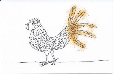 53_365.3 orange-tailed chicken