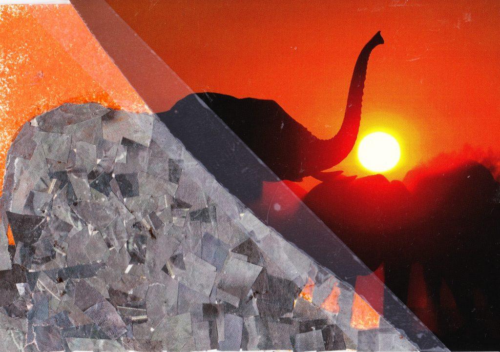 036a - Sunset at waterhole Savuti camp Linyati Reserve Botswana
