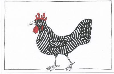 106_365-3-zebra-chicken