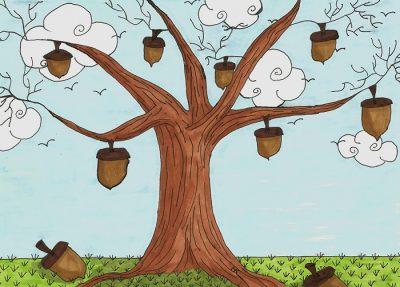 acorn-tree