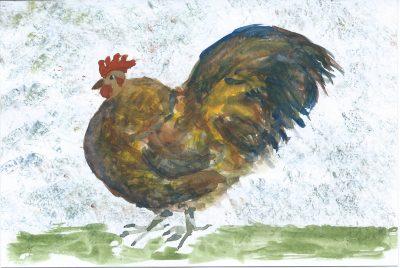 136_365-3-farmyard-chicken