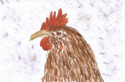 137_365-3-slightly-cross-chicken