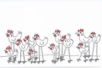167_365-3-a-dozen-chickens-in-a-queue